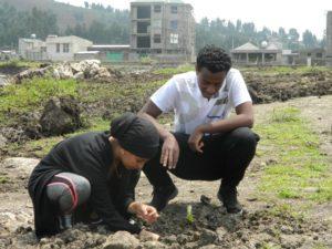 Tree planting at ECUL